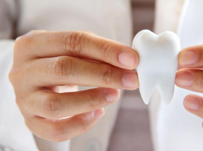 dentiste avec un dent