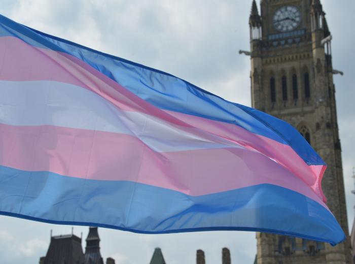 drapeau de fierté trans