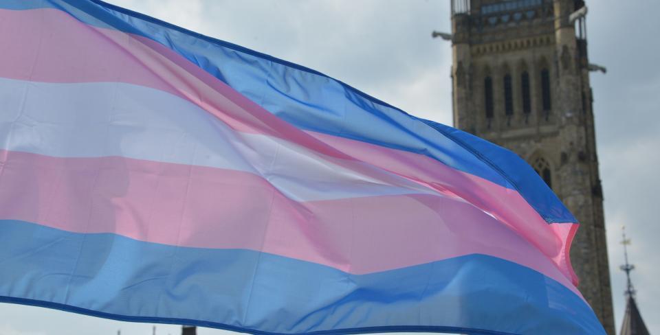 drapeau de la fierté trans