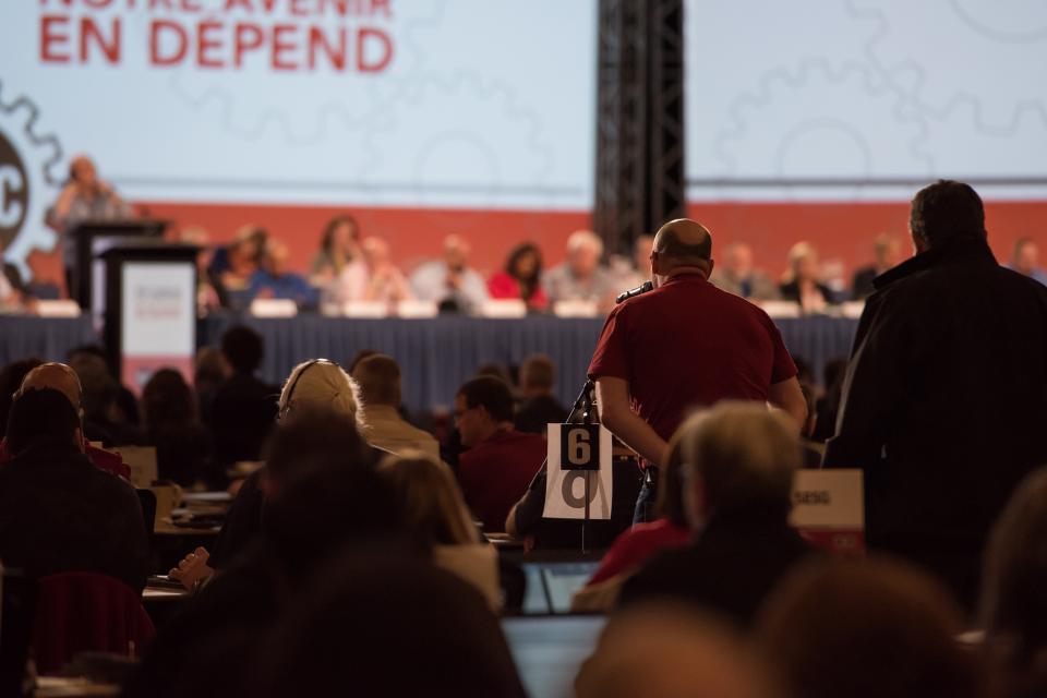 Convention plenary