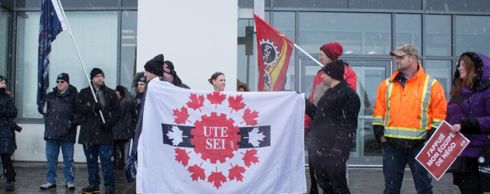 UTE rally