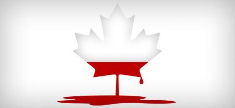 Feuille d'érable du drapeau canadien saignant et perdant la couleur rouge de la feuille pour devenir transparante.